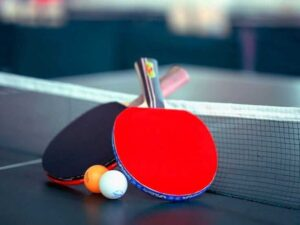 Best Ping Pong Paddle - TECHOFLIX