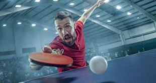 9 Best Ping Pong Paddles Review In 2021
